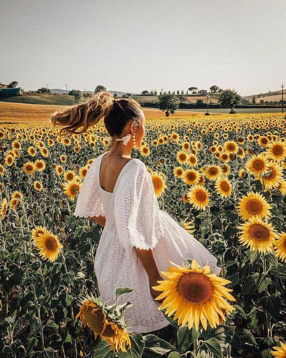 Sunflower fields - Source: Jessica Wang, Social Media Influencer