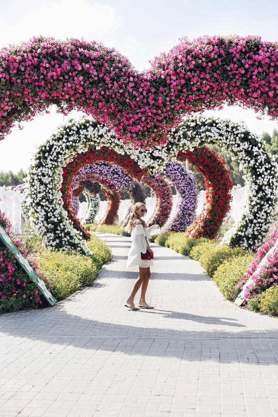 Miracle Flower Garden - Source: Leonie Hanne, Social Media Influencer