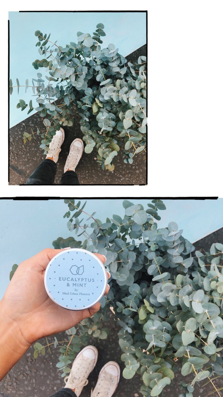Eucalyptus & Mint - Our eucalyptus and mint candle is sweet and strong peppermint mingles with freshly picked eucalyptus leaves. Eucalyptus is an excellent pick-me-up when you're feeling tired and exhausted. It's potent aroma is great for stimulating both the mind and the body while the mint relieves anxiety.