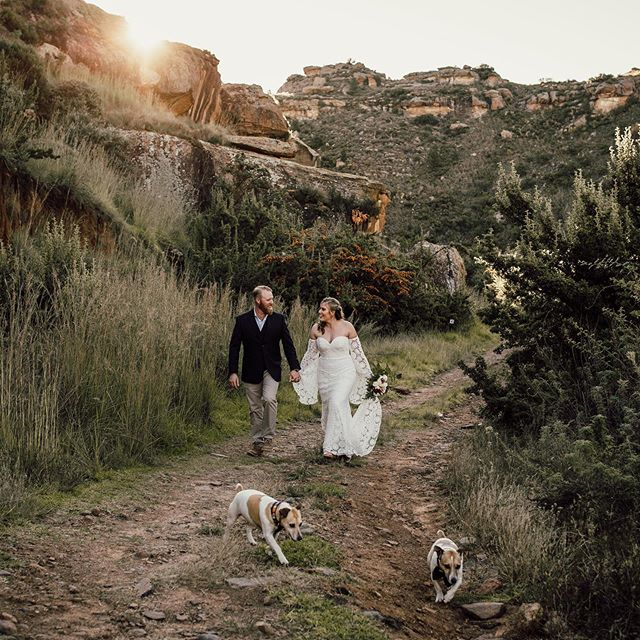 Bring your dogs. Always. There was no way that Bob & Marley would miss this big day - they took their job as witnesses quite seriously (swipe). Still grateful for the fact that my two buddies trusted me with the documentation of their memories. What a day this was!  The most beautiful intimate wedding, finished off with a proper 4x4 adventure for sunset and one heck of a party afterwards.  #elopeinsouthafrica #adventurewedding #intimatewedding #elopement #elopementlove #elopementphotographer #authenticlovemag #loveauthentic #elopementlove #wanderingweddings #couple #adventureweddingphotographer  #adventureelopement #southafricaphotographer #adventureelopement #clarenswedding #southafricawedding #elopementcollective #radstorytellers #dirtybootsandmessyhair #southafricaelopement