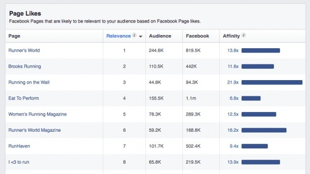How Facebook Audience Insights reports interests. In this image, the interest is running.