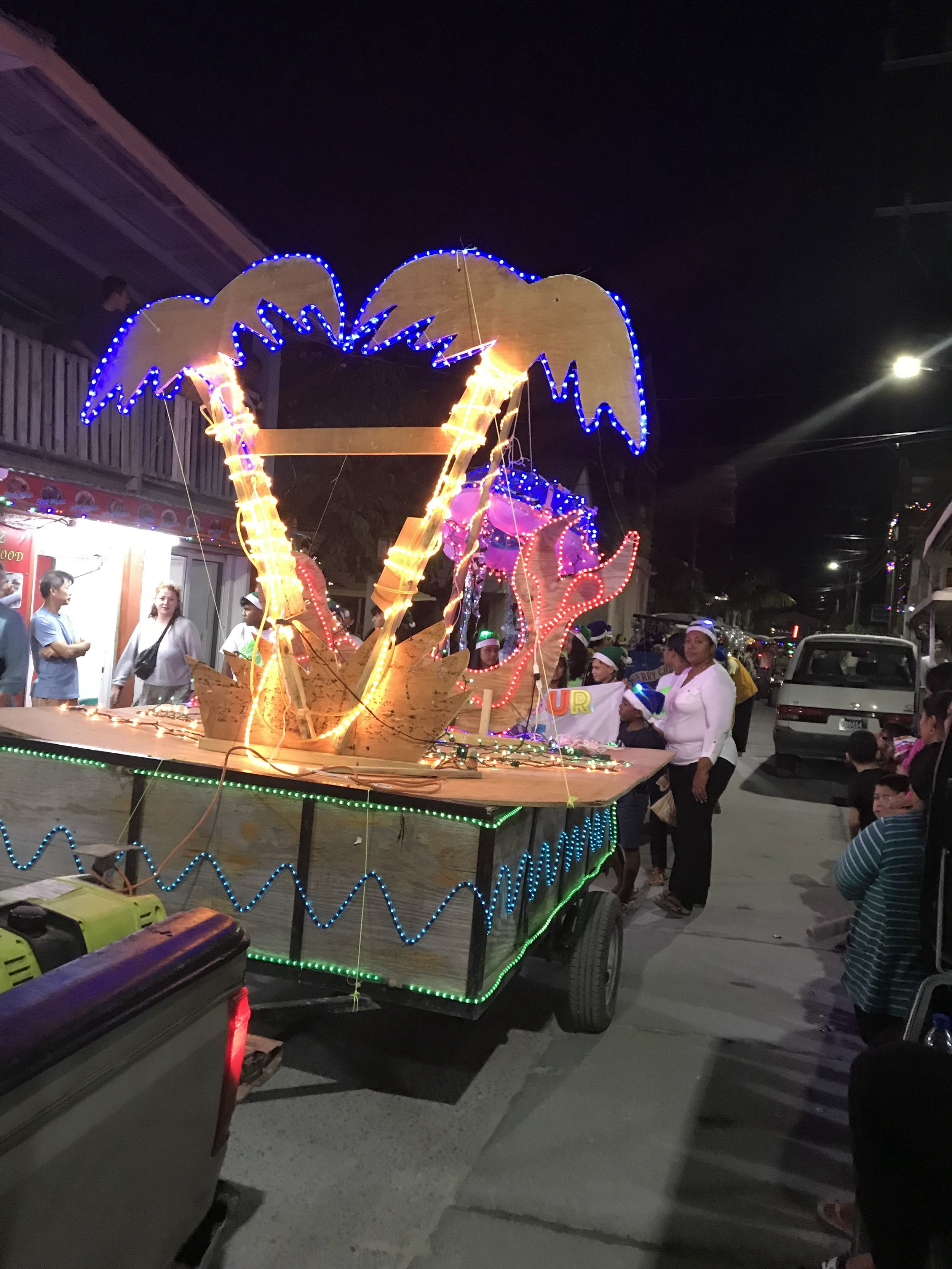 One of the many beautiful, lighted carts in the parade!