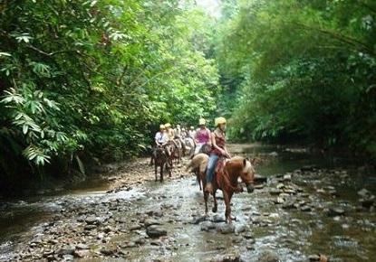 Horseback Image.jpg