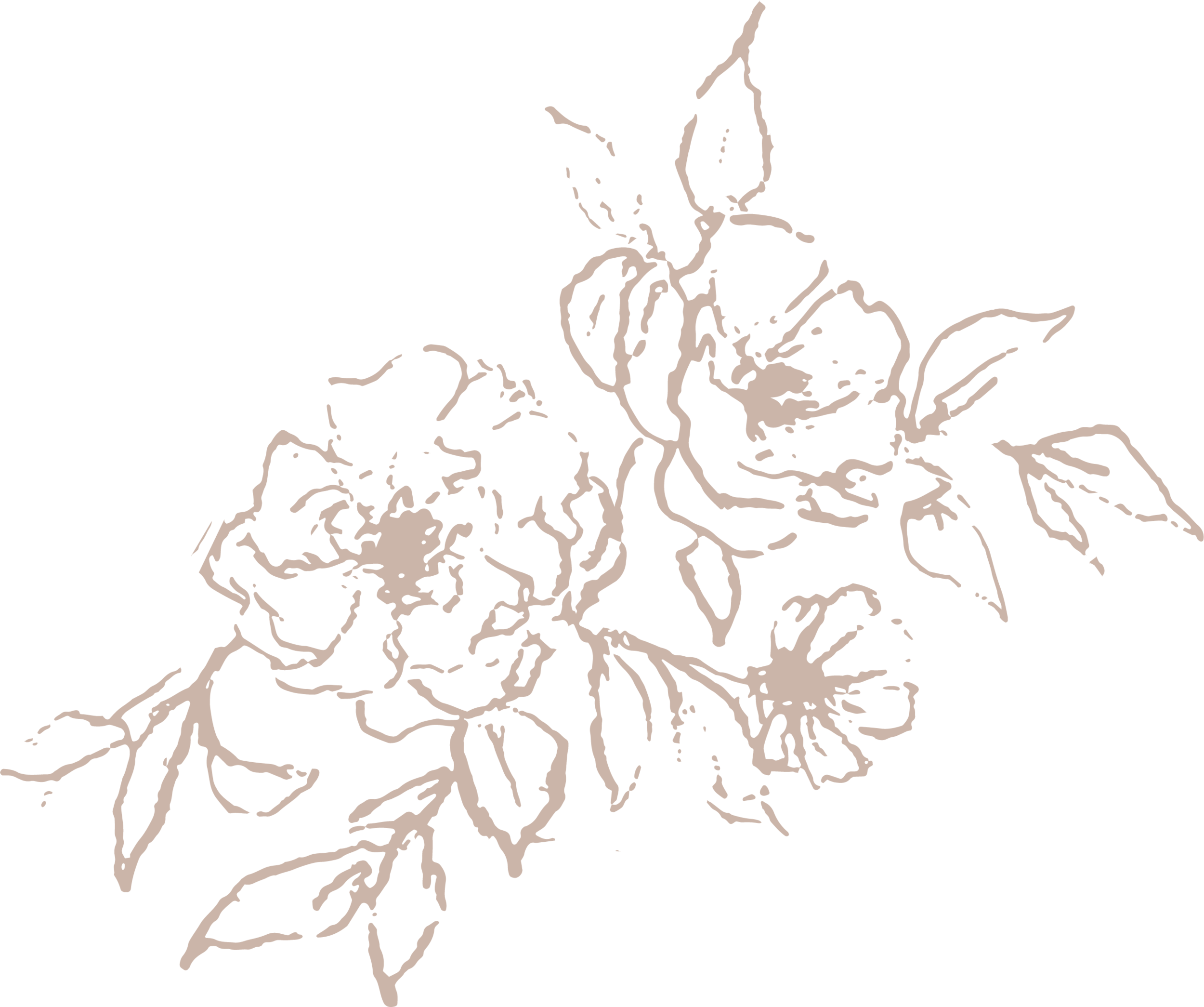 Mini Illustration Light Rose high res.png