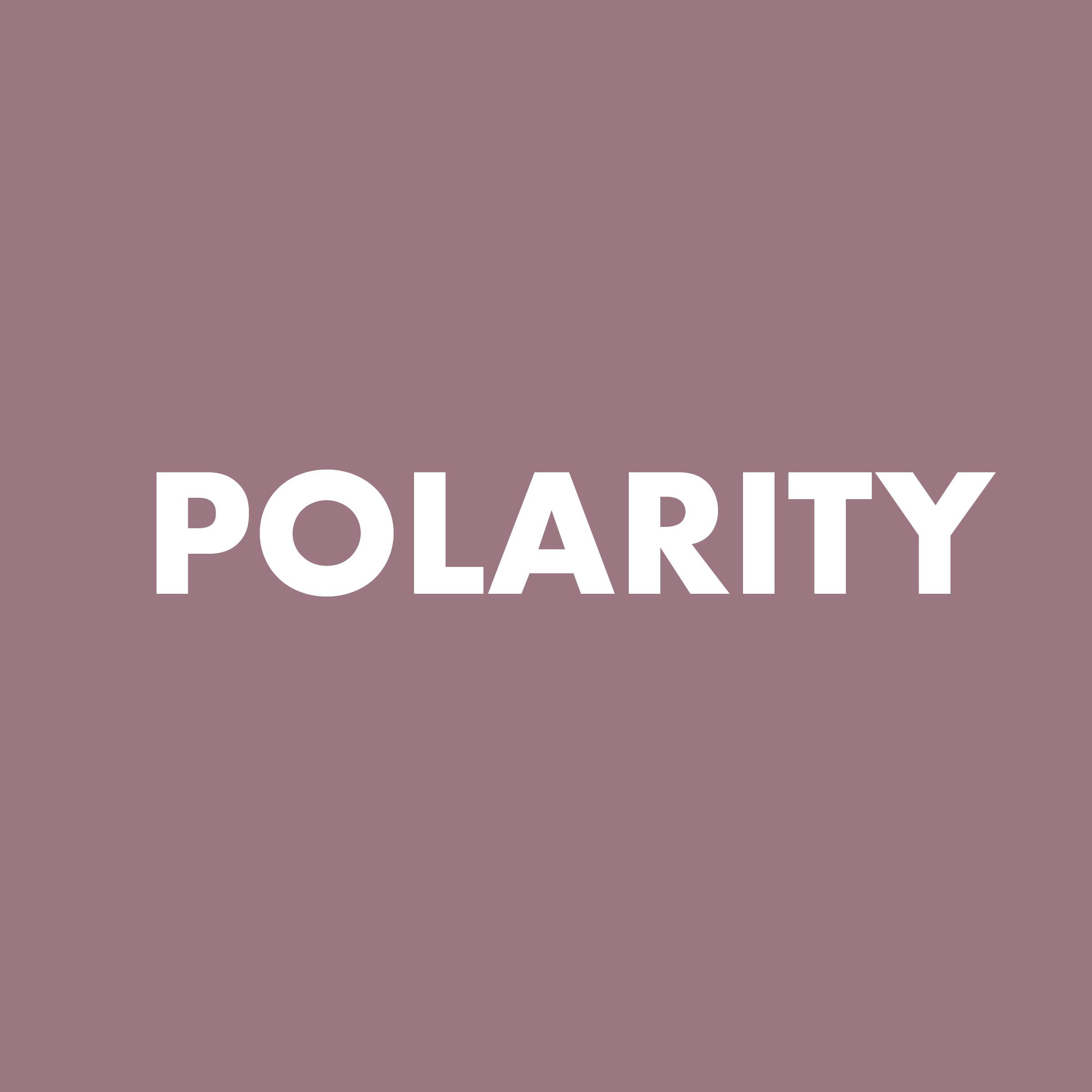 polarity.jpg