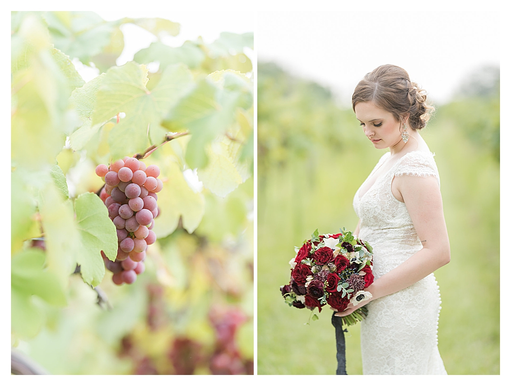 Daniel's Vineyard Wedding Photos_0192.jpg