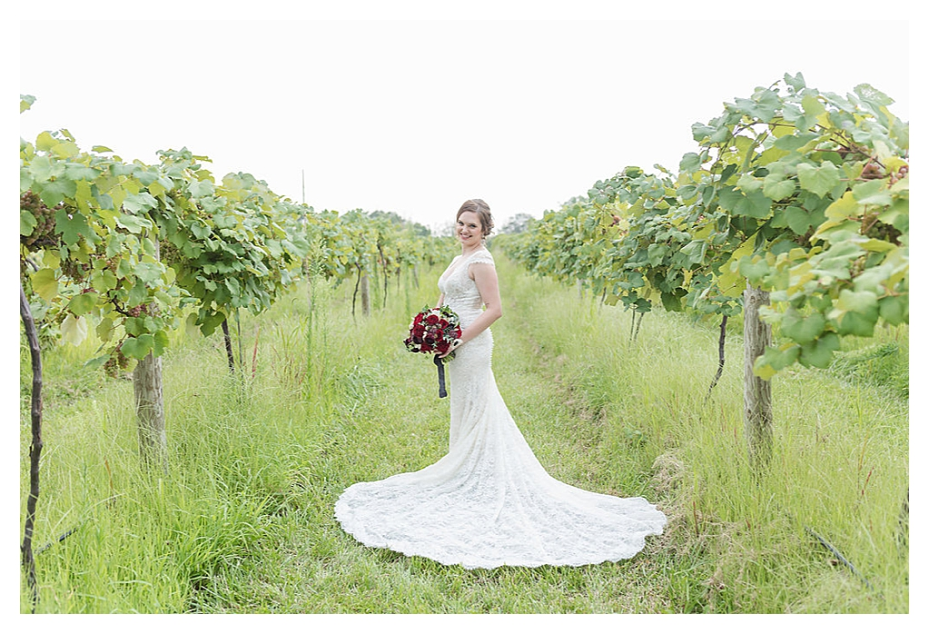 Summer Wedding Daniel's Vineyard_0200.jpg