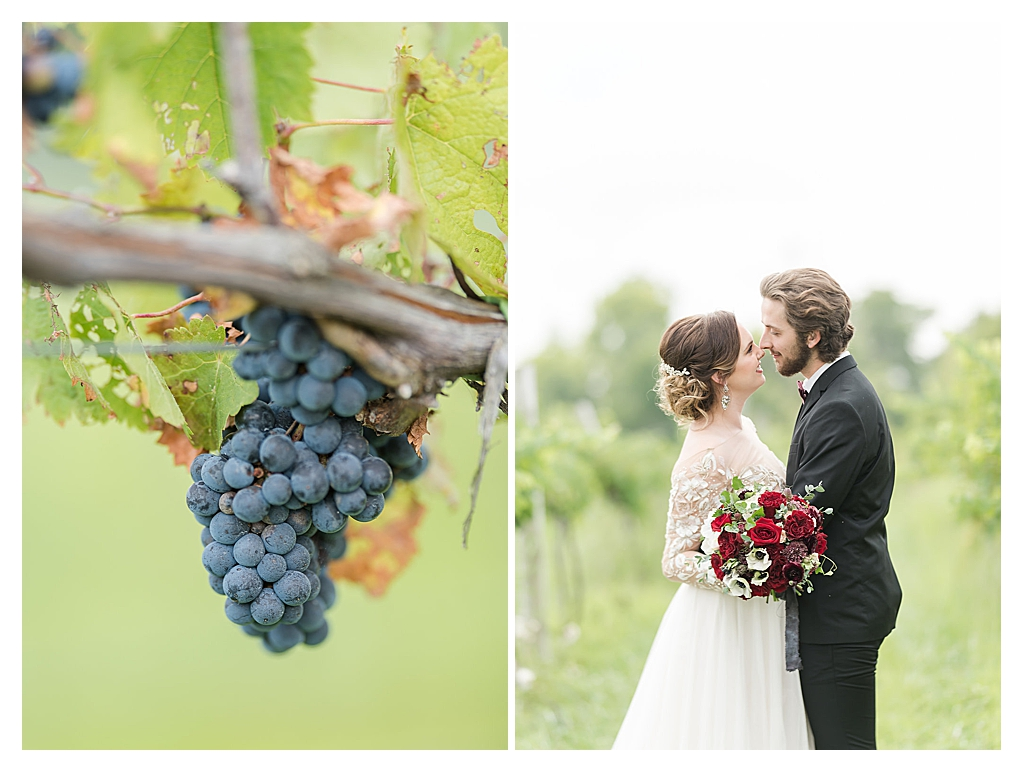 Vineyard Wedding Indiana_0180.jpg