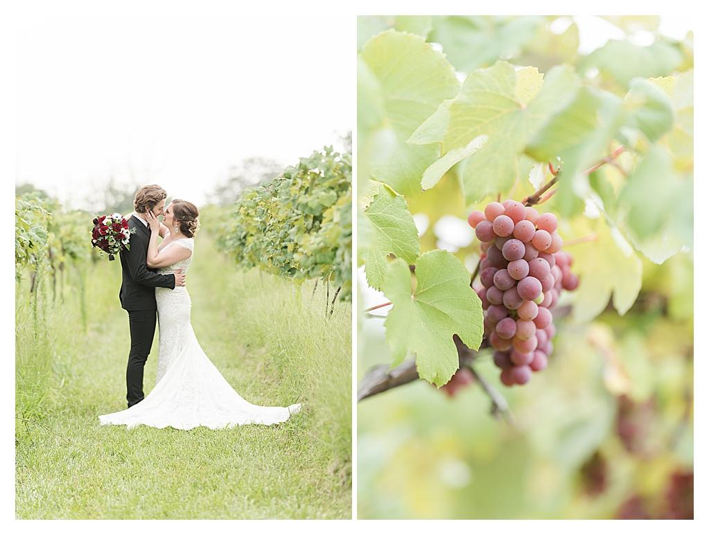 Vineyard Wedding Indianapolis, Indiana_0182.jpg