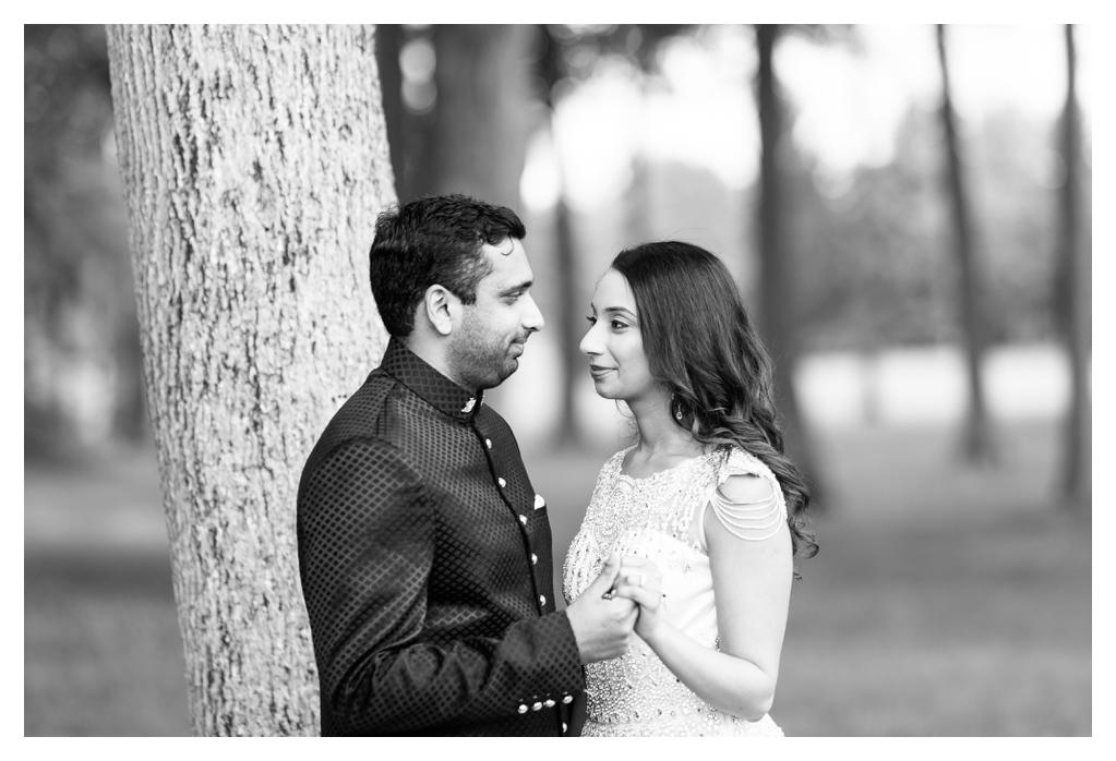 Chicago Indian Hindu Wedding Photographer_0519.jpg