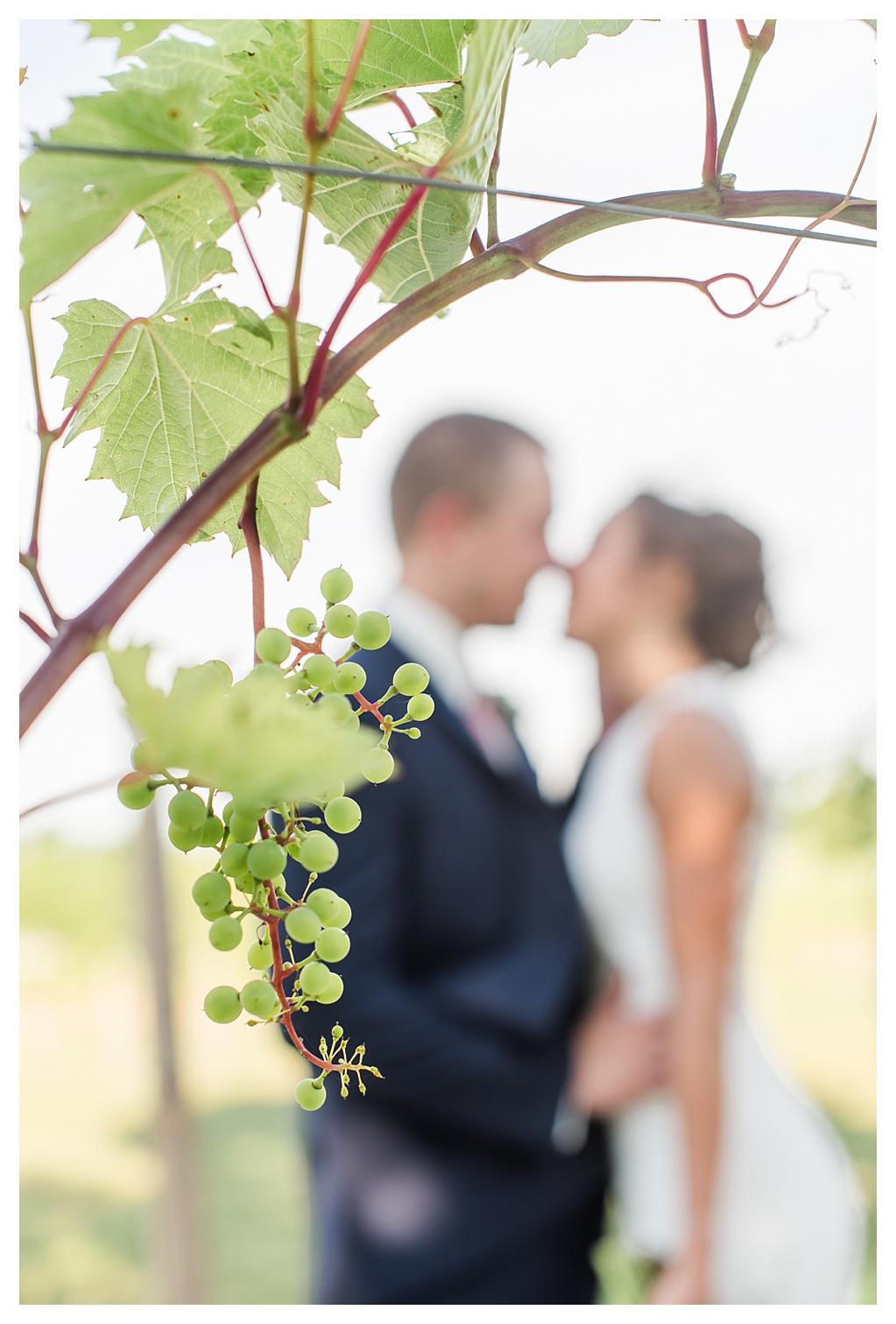 Vineyard Wedding Indiana_1345.jpg