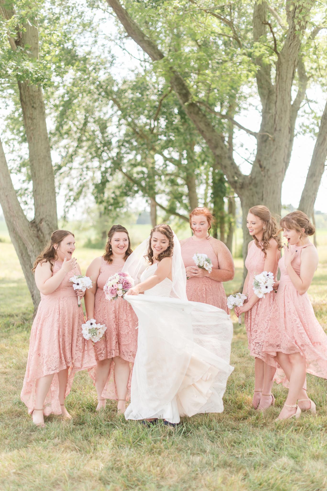 Anderson, Indiana Wedding Photographers9591.jpg