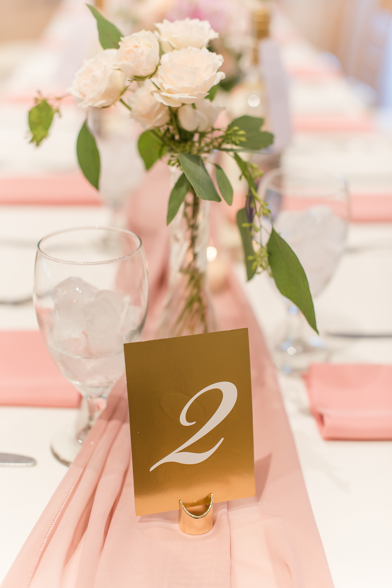 Sycamore at Mallow Run Wedding6259.jpg
