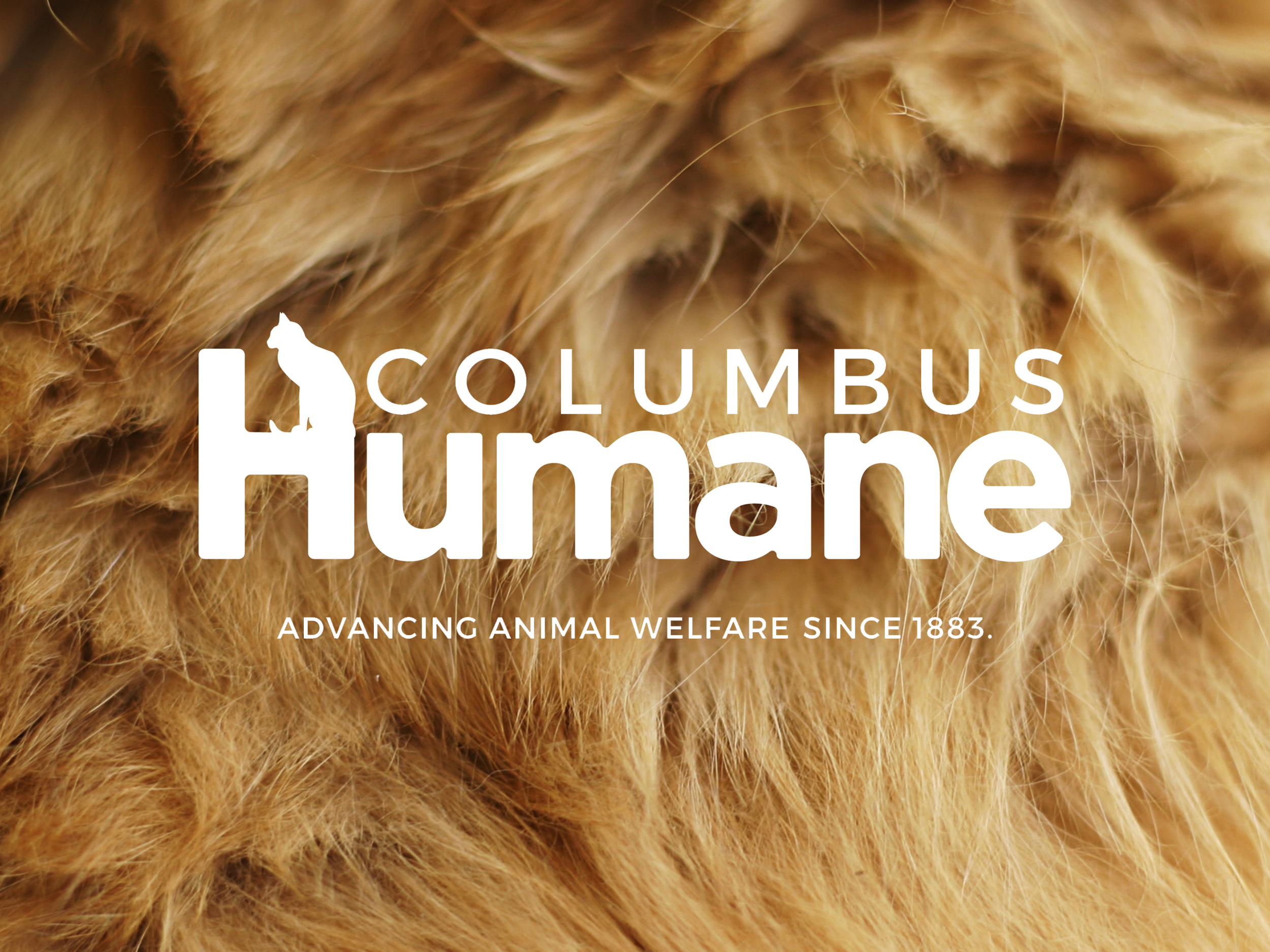 SEPTEMBER 2017 - Capital Area Humane society was rebranded and the name was changed to Columbus Humane.