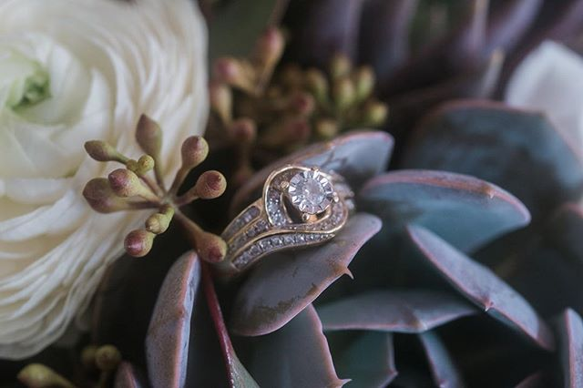 Succulents and stones 💍❤️ Anyone else super into the details? We love working with couples but theirs a part of me that loves laying little pieces of fancy jewelry into plants or in a lay flat position. It's all part of the day, part of our couple's wedding story! Plus, look at how gorgeous this ring is 😍😍😍 . @bloomsagardenshop . . #mississippibride #mississippiwedding #hattiesburg #hattiesburgms #downtownhattiesburg #mississippiweddingphotographer #mississippiweddings #bouquetofflowers #weddingring #goldanddiamonds #detailshot #detailphoto #ringshot #macrophotos #macroring #succulentsofinstagram #succulents #springwedding #byrdistheword2019 #junebugweddings #rocknrollbridemagazine #rocknrollbride
