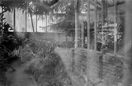 Glasshouse 006-2.jpg