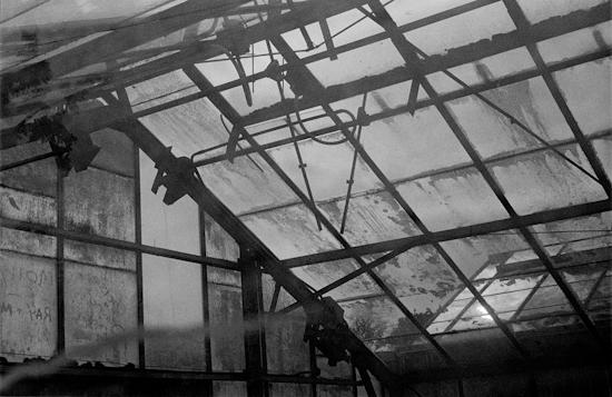 Glasshouse 012-2.jpg