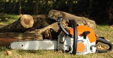 Tree Removal -