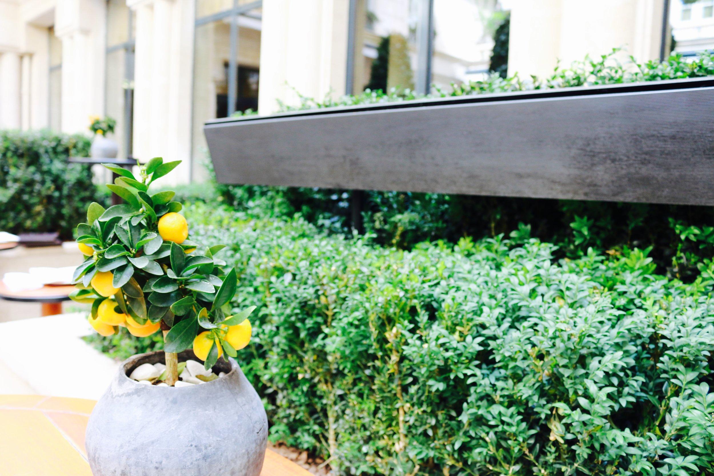 Courtyard of the Park Hyatt Paris (2015) | Travelhappy Luxury Hotel Review