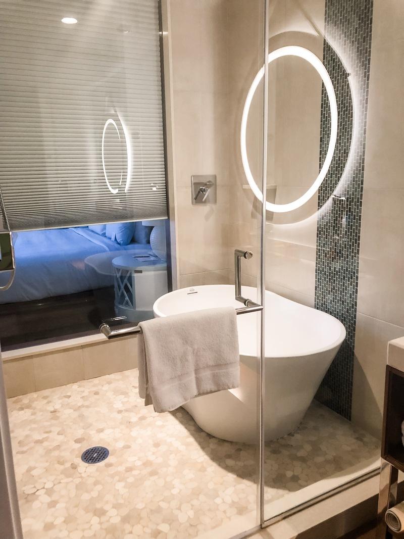 Mini soaking tub and step-in shower