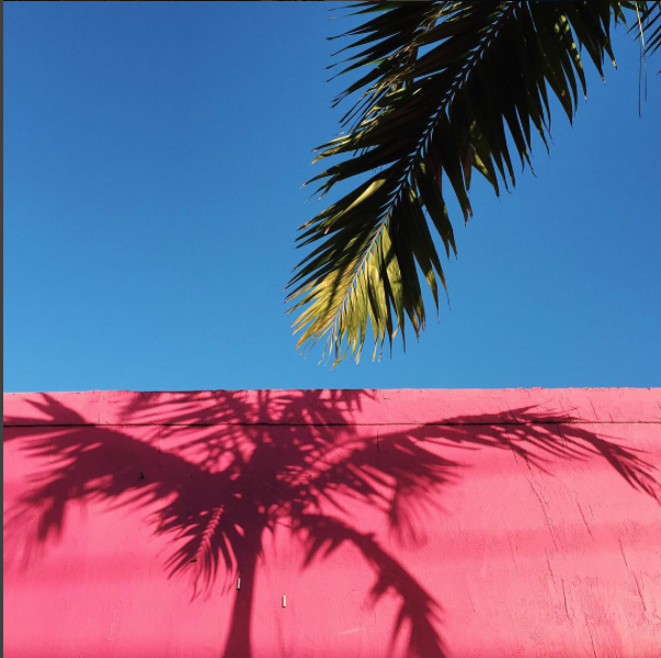 Photos that don't feature our brand are also OK! Look for bright colors, tropical motifs, and interesting perspectives