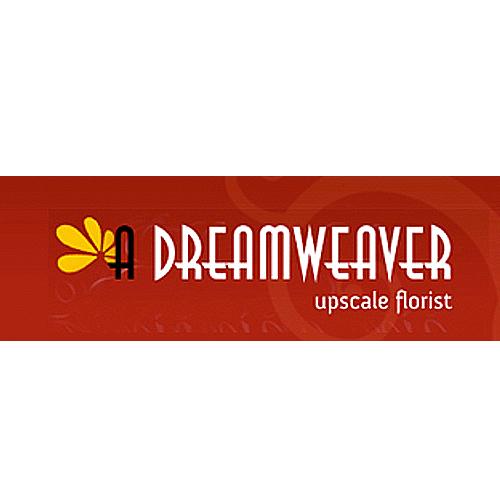 logo_b_dream.jpg