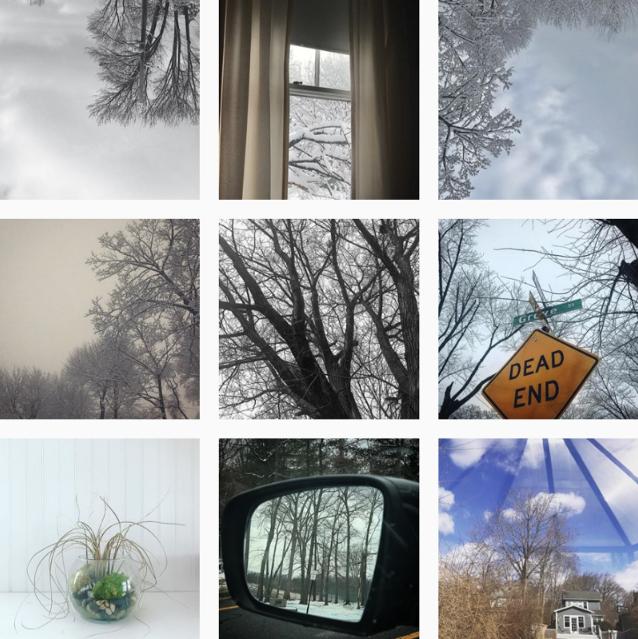 @trustgreene  — February to March 2019