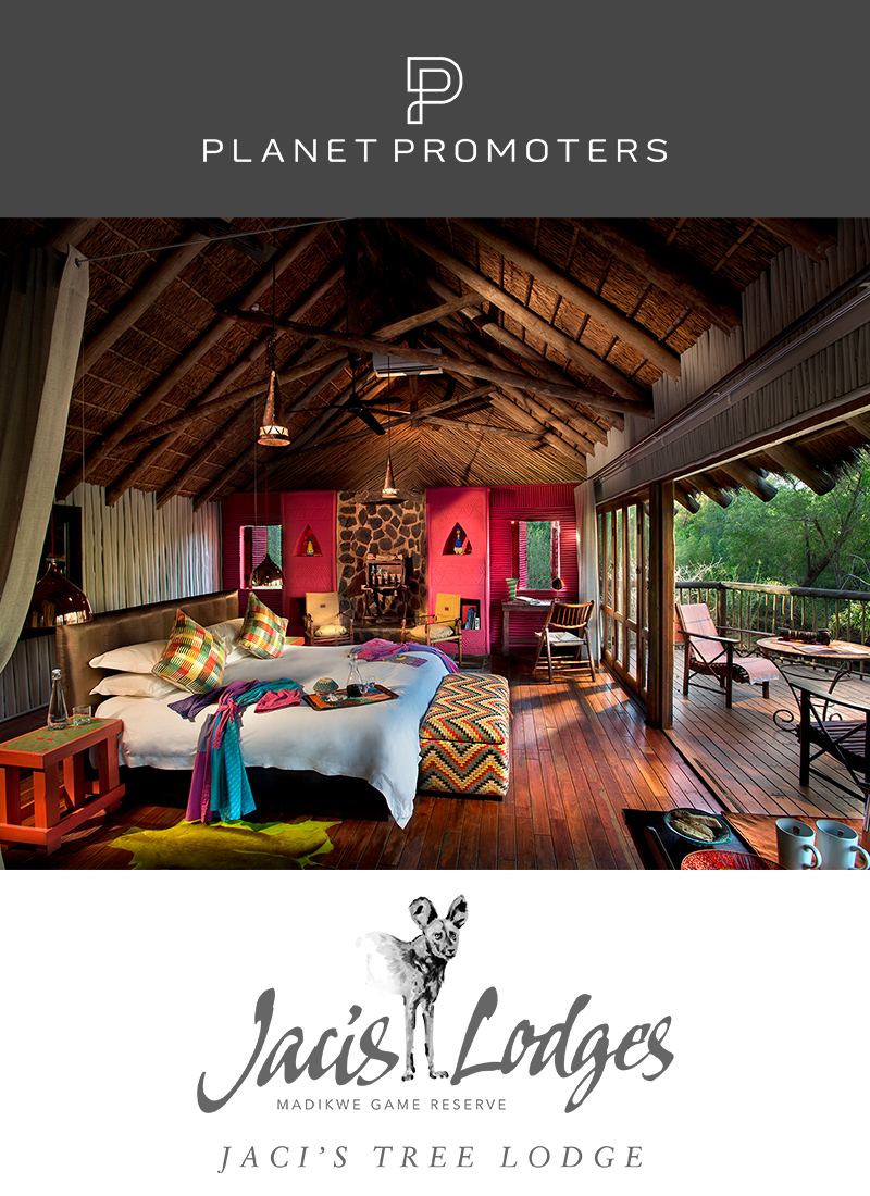 Jaci's Tree Lodge | South Africa