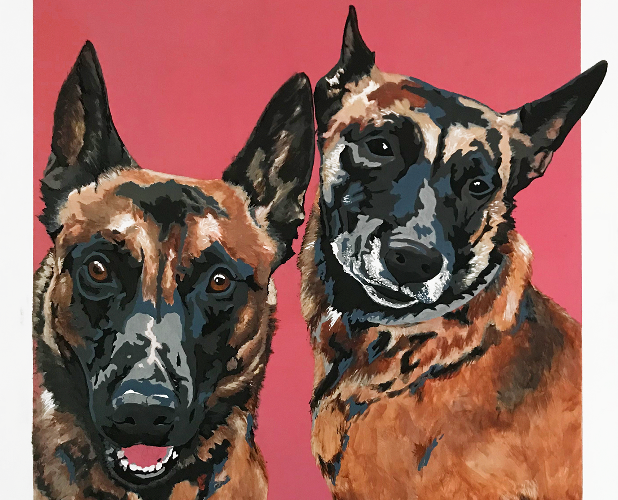 MALINOIS PORTRAIT - When asked to do this 16 x 20 inch portrait of Belgian Malinois in New York, Casey was excited to get started.