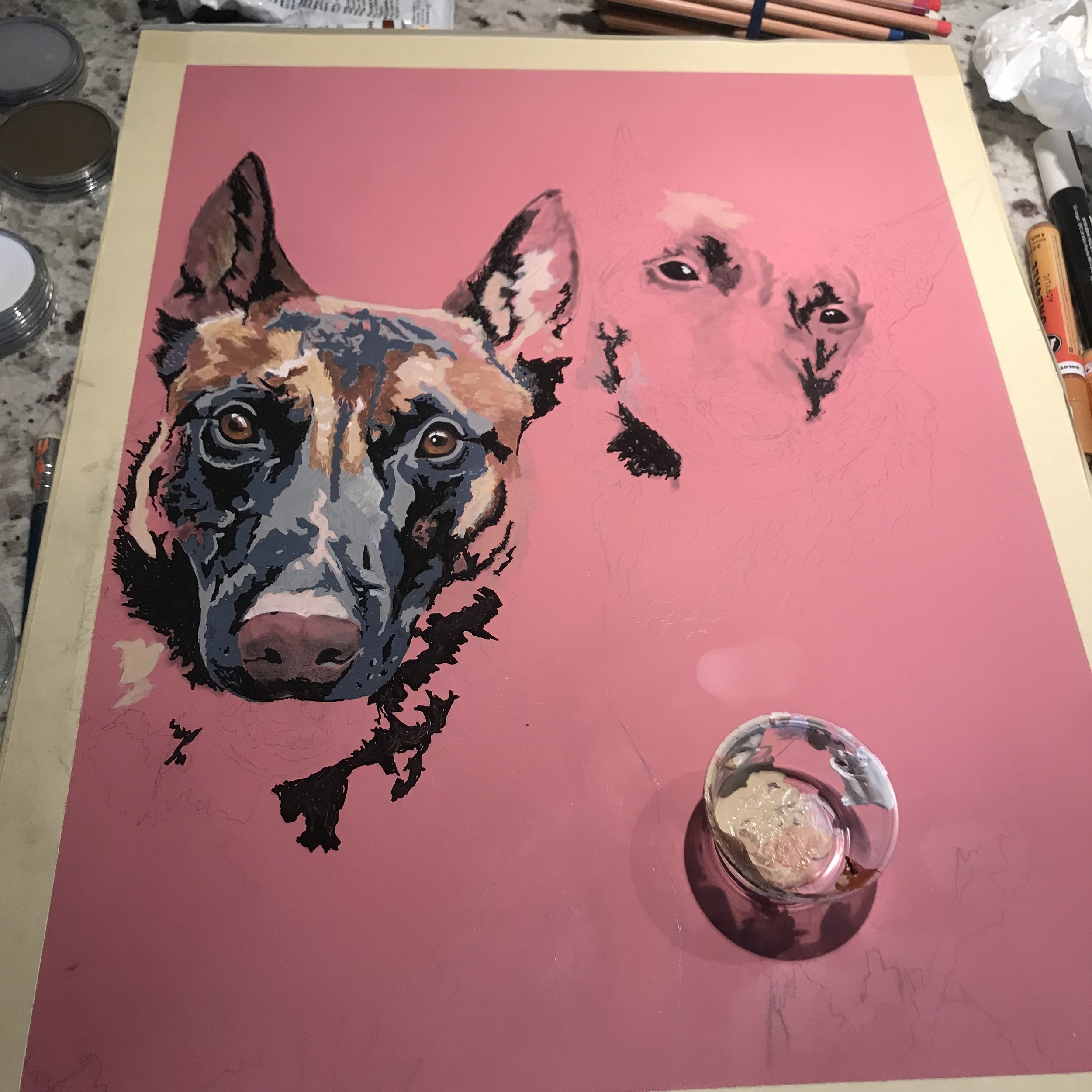 Belgian Malinois Painting In Progress By Casey Lynn Hancock
