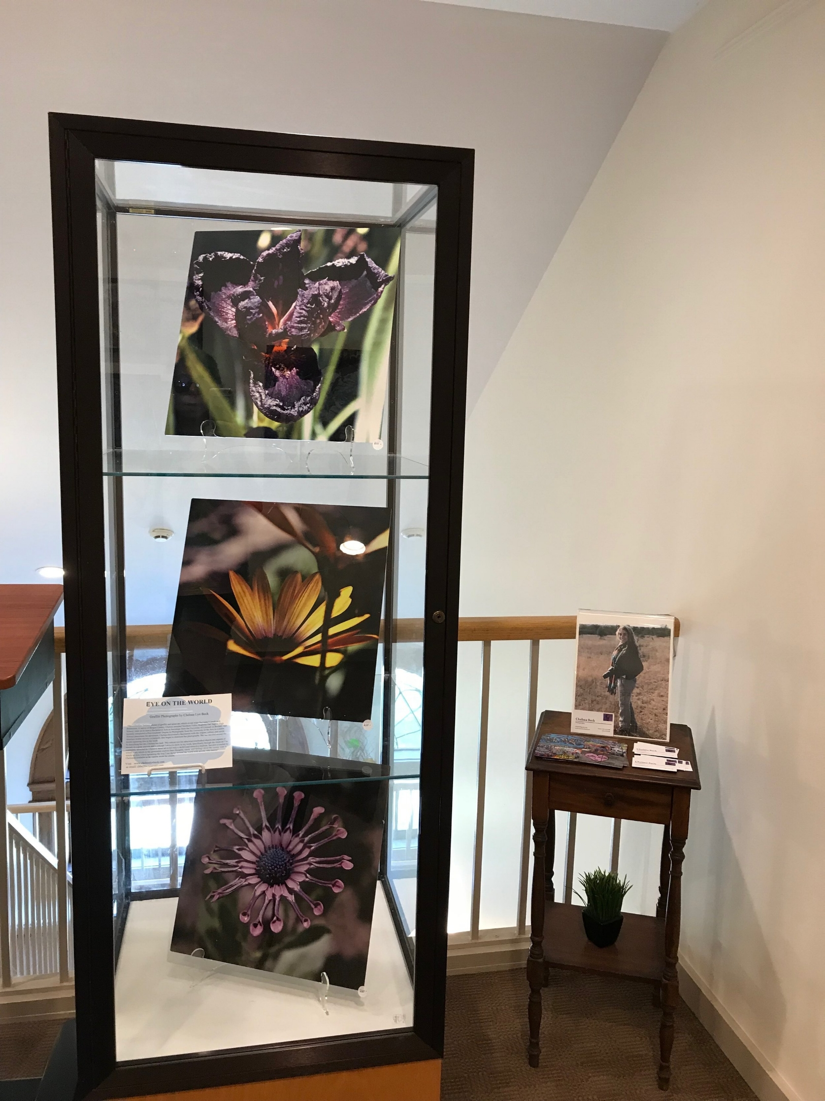 "- Top-of-the-Stairs Art Gallery""Flowers of the Backstreets""Orangeburg, New YorkOctober 2018"