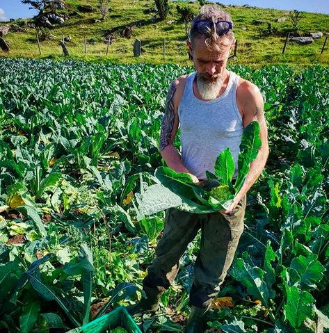 Frode Ljosdal driver Brimse Gård, og er blant landets fremste produsenter av grønnsaker.