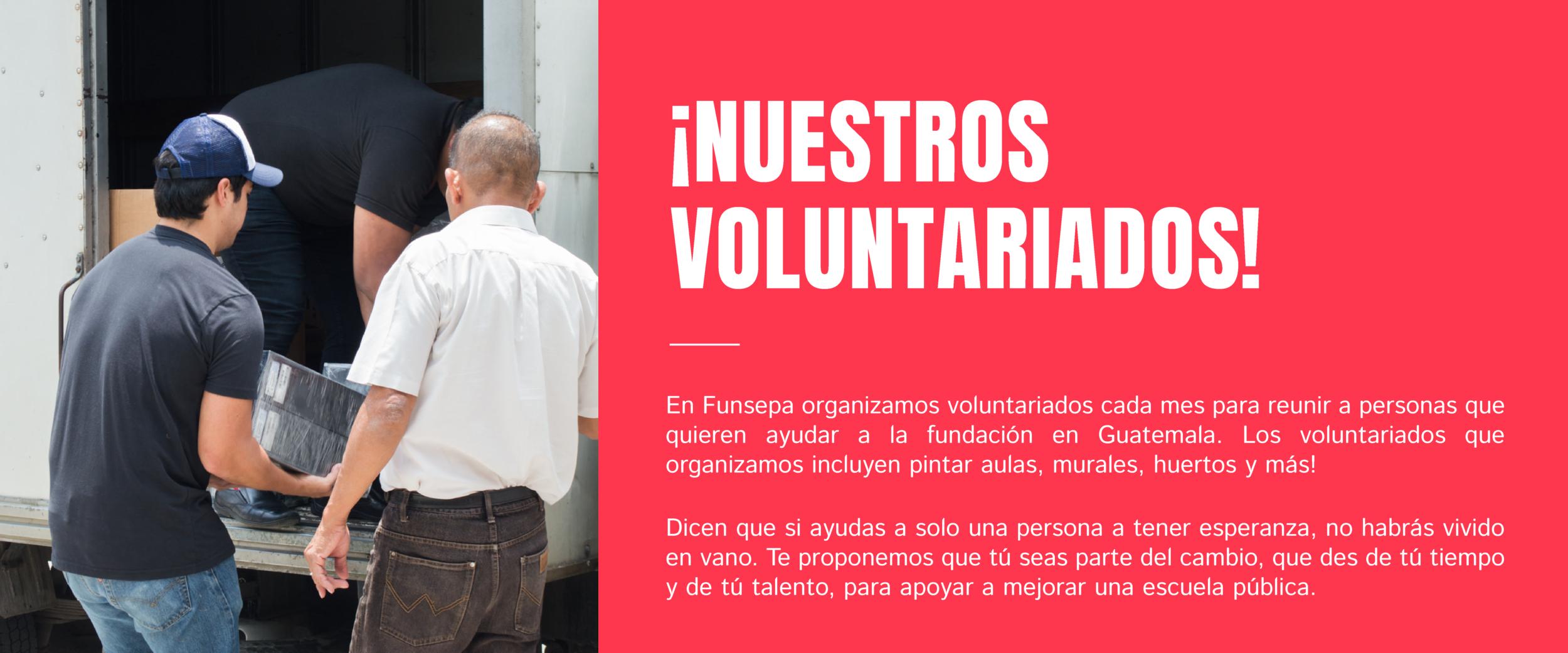 Voluntariados-01.png