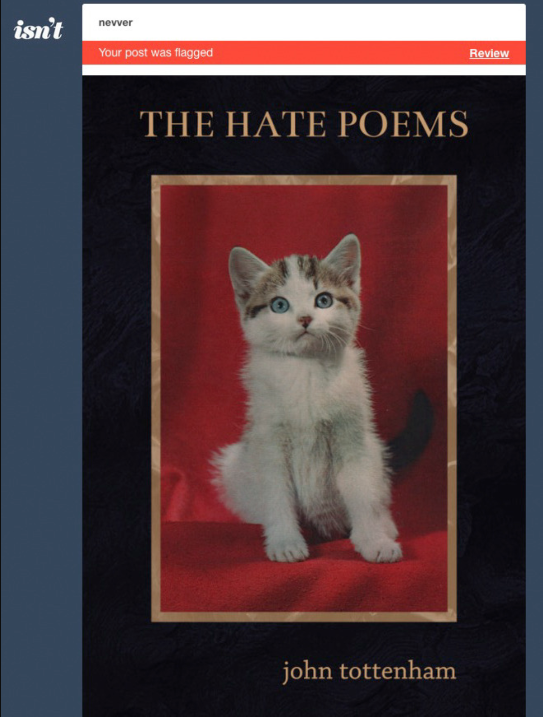 This post by Tumblr blog   Nevver   was flagged. The kitty looks shocked because he's wondering why Tumblr thinks he is NSFW. He is suitable for everywhere, okay?