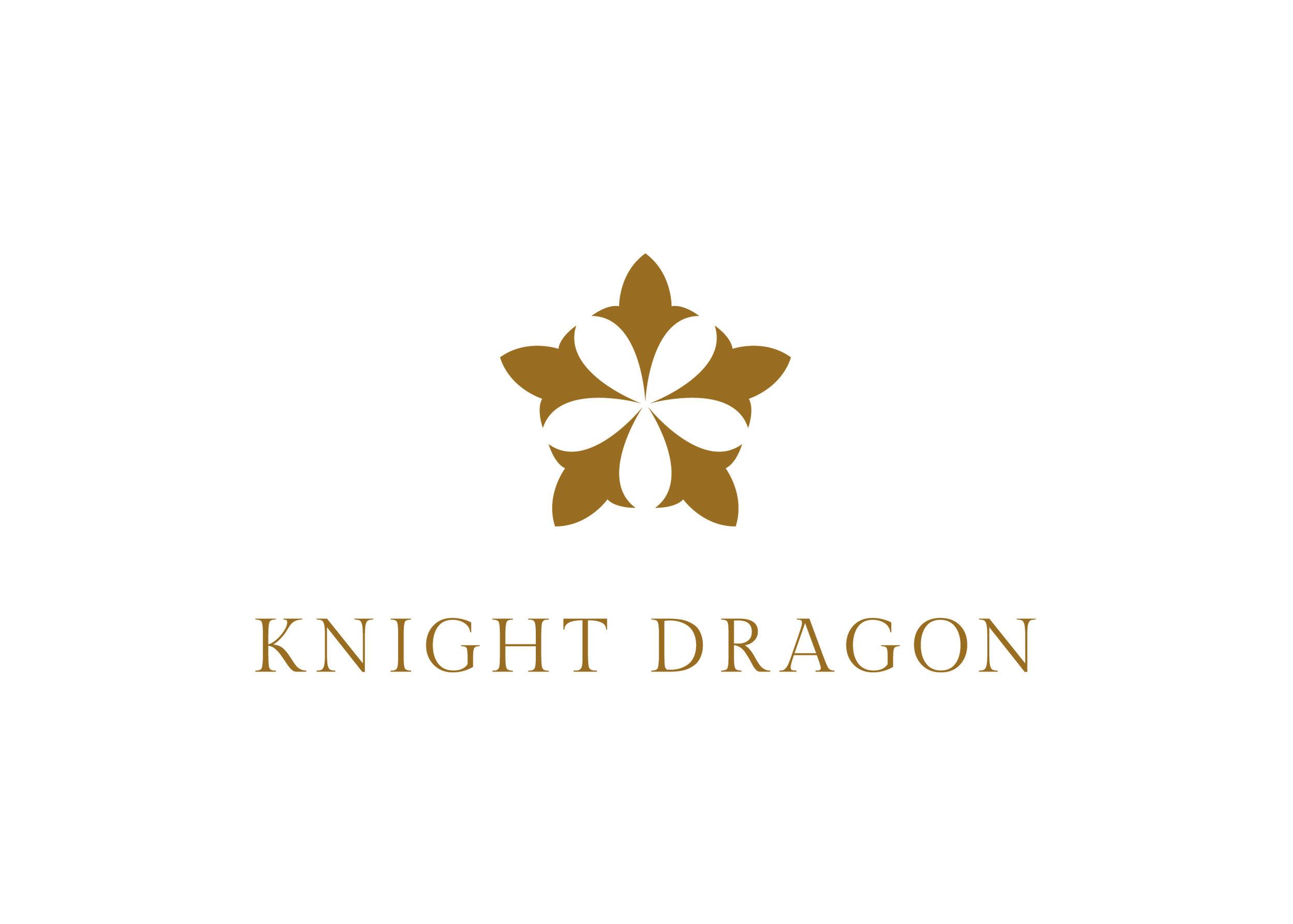 Knight_Dragon.jpg