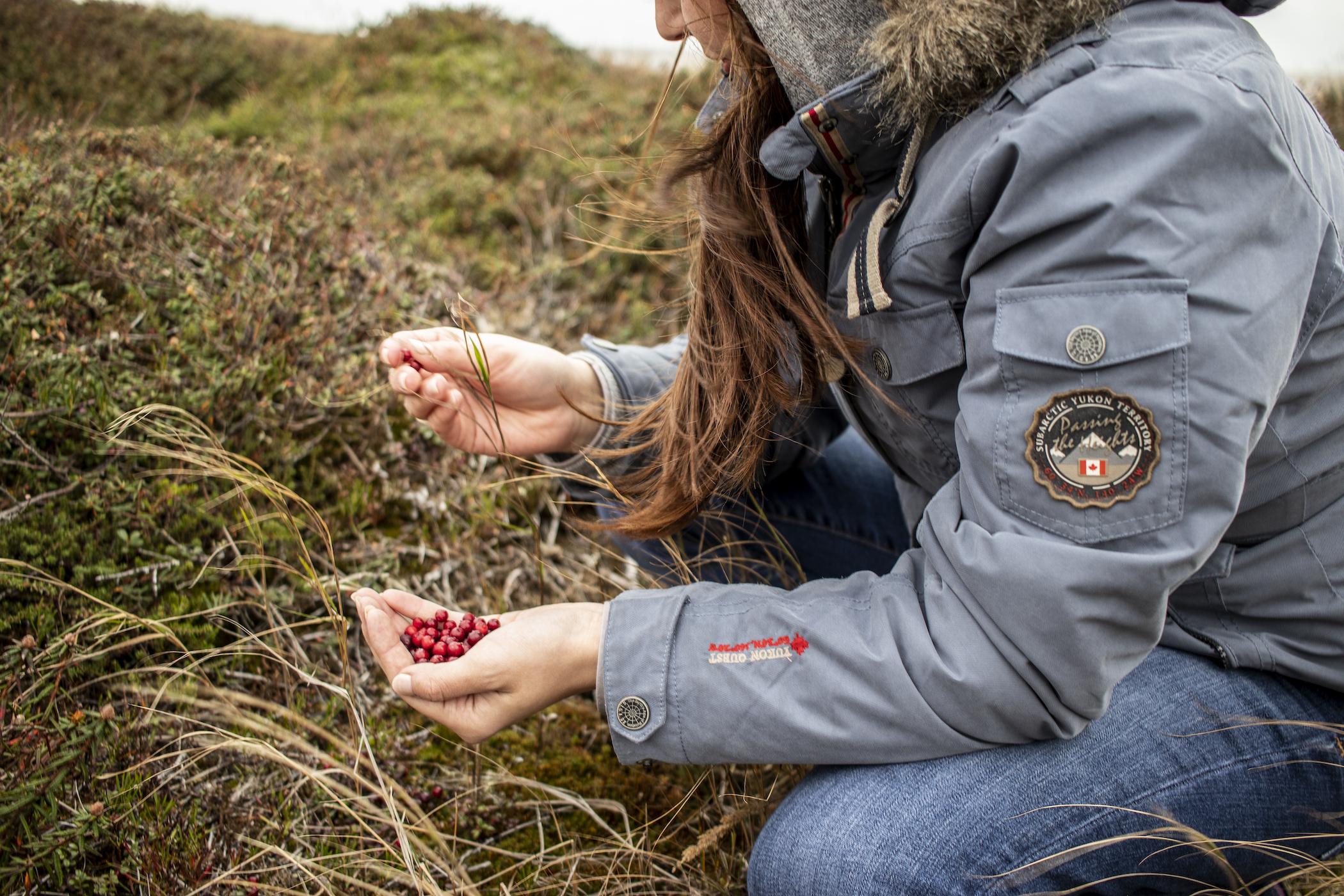 Johnna Picking Berries.jpeg