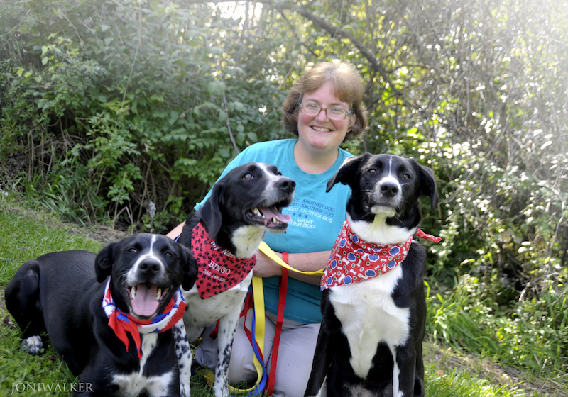 dr. colleen quinn veterinarian and owner of pet pals country club in columbia city, indiana