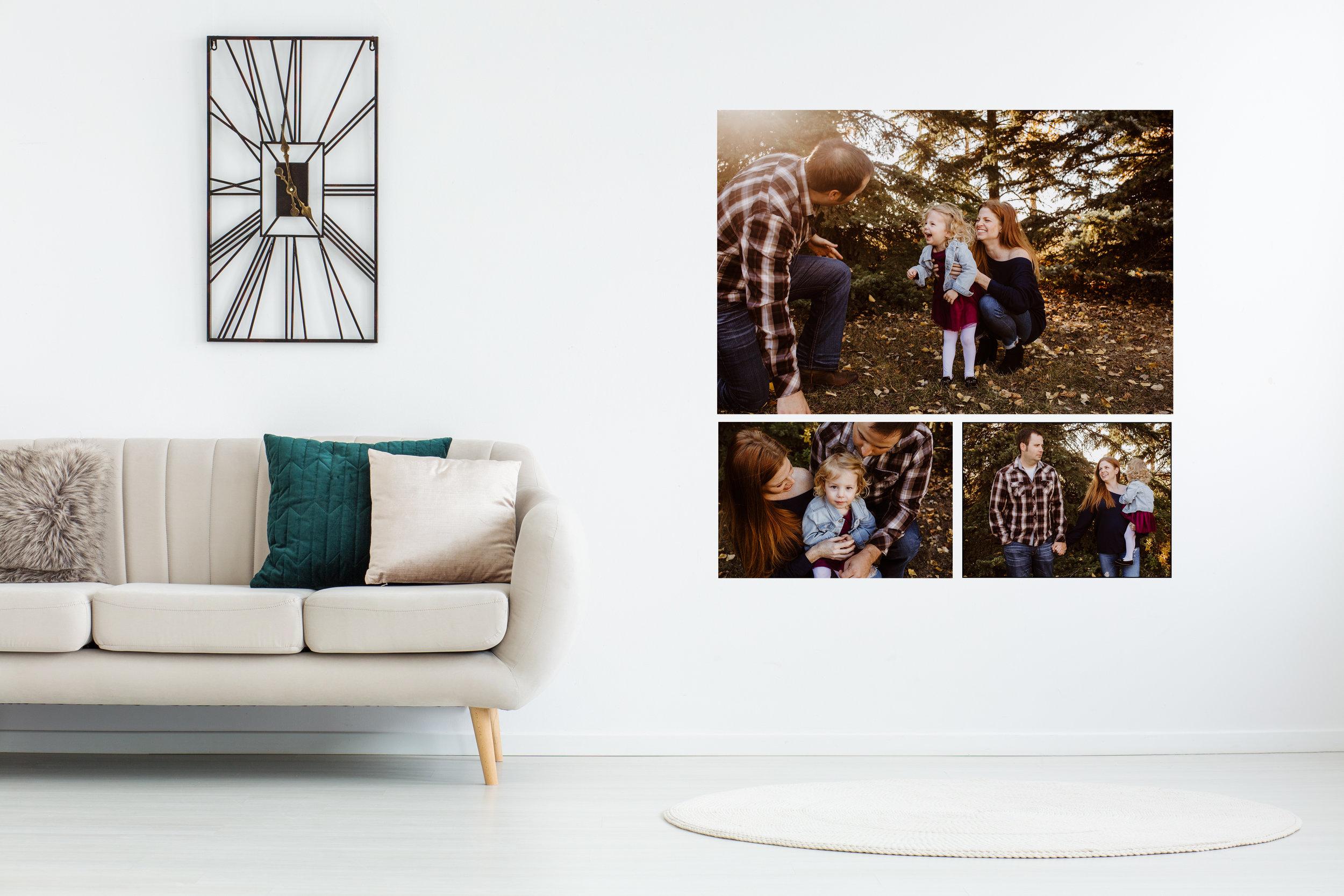 WALL ARTWeyburn and Regina Photographer Album Prints.jpg