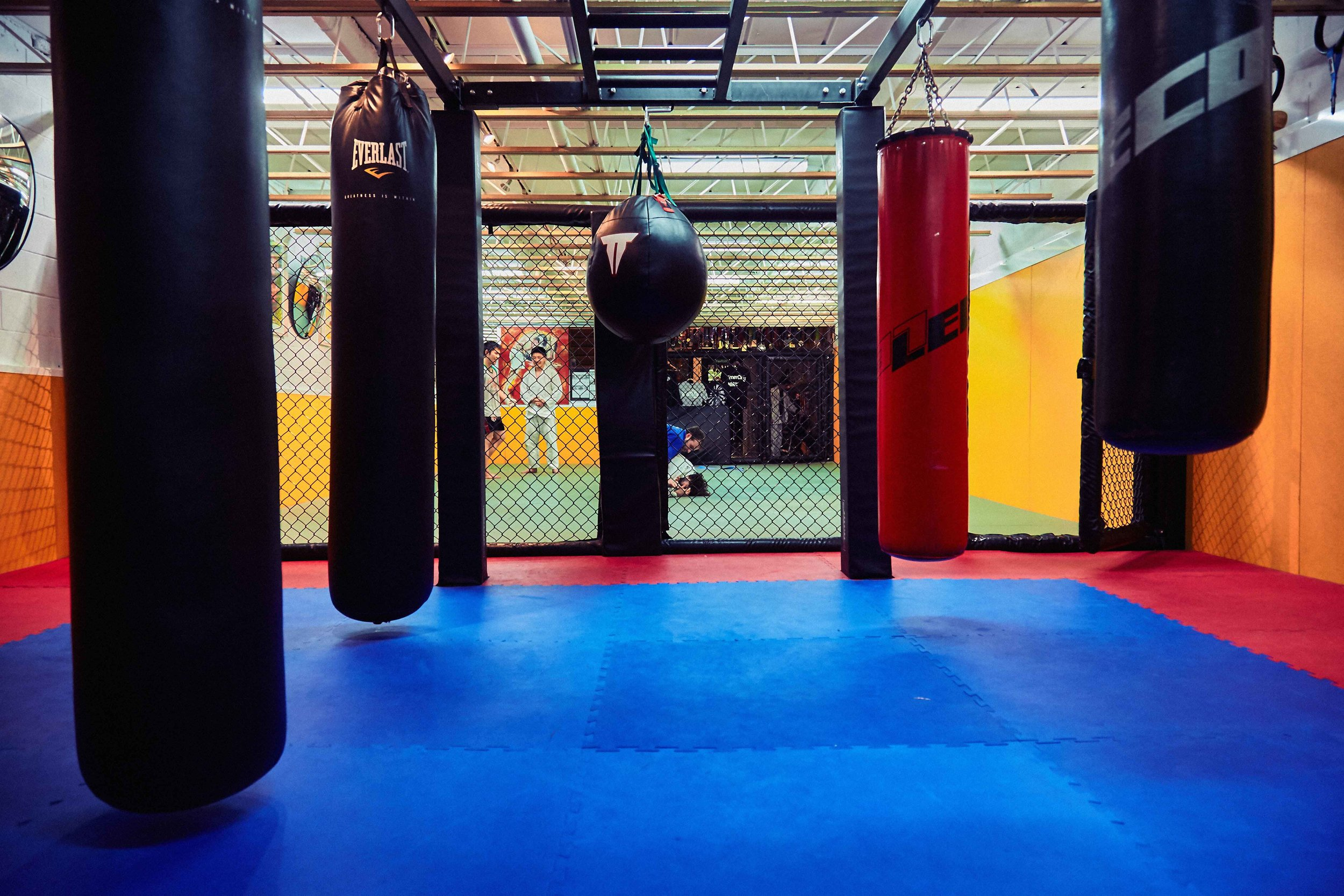 Our jungle gym is ready.Are you? - Equipped with kicking sheilds, muay thai pads, boxing mitts, slip bag, duck line, padded walls, olympic rings, Indian Clubs, monkey bars, double end ball, skipping ropes, pylons, concept 2 rower, free weights, squat bar, 2 olympic bars, lifing platform, squat rack, juggling clubs & balls (coordination training), AND SO MUCH MORE