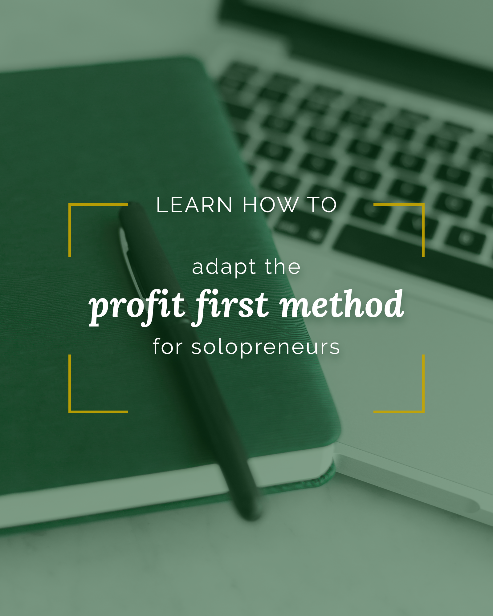 learn-to-adapt-profit-first-method-online-solopreneurspng