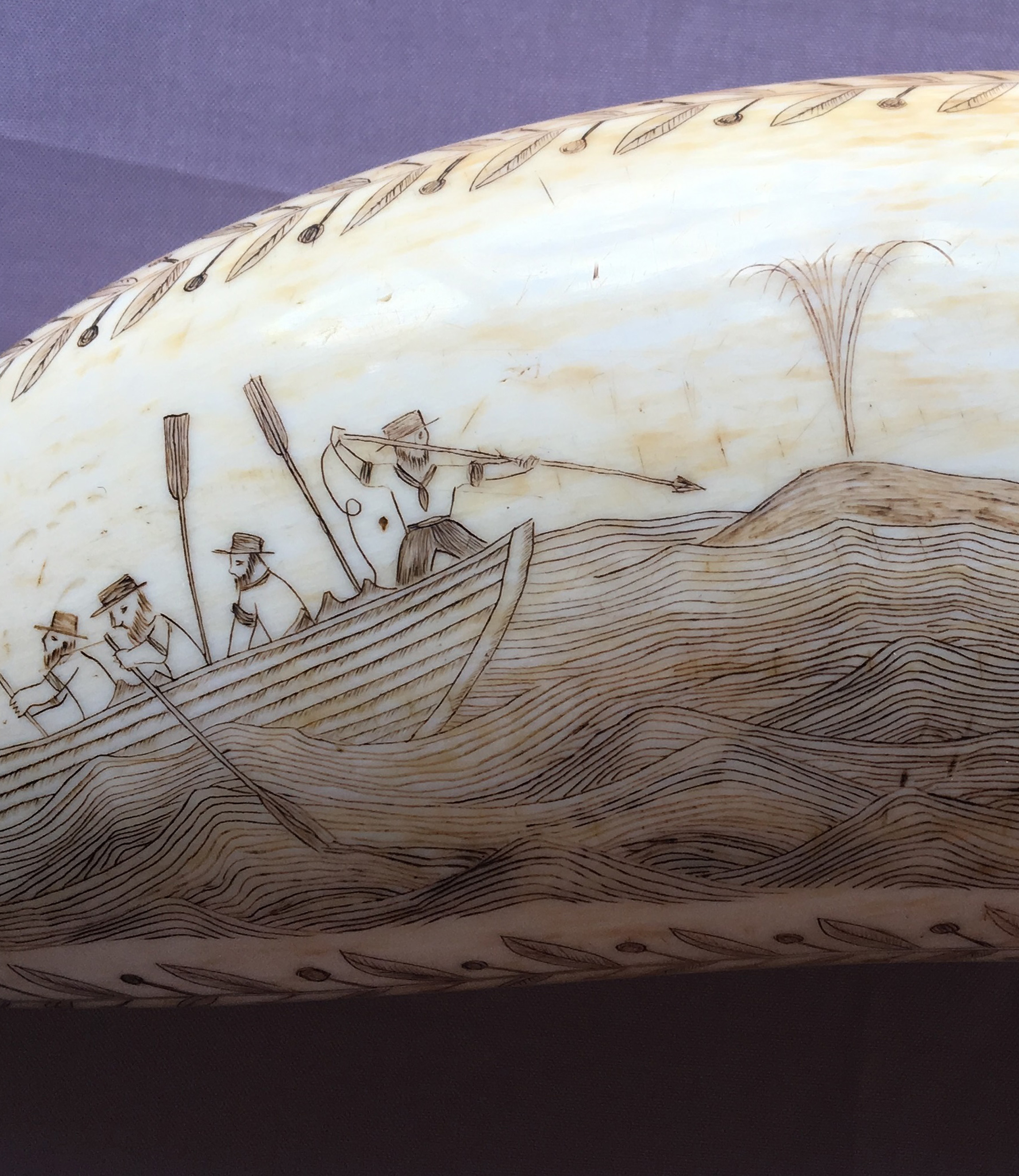 Scrimshaw - Narryna's scrimshaw collection reflects the importance of whaling to Tasmania's 19th century economy.