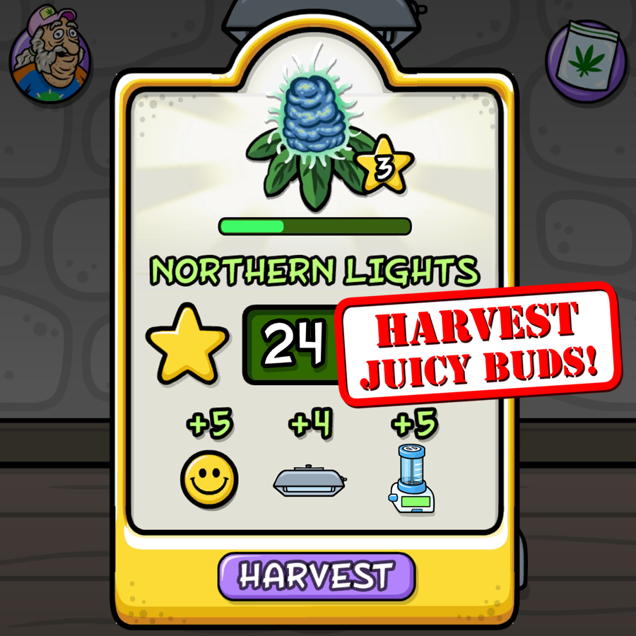 Harvest_900x900.png
