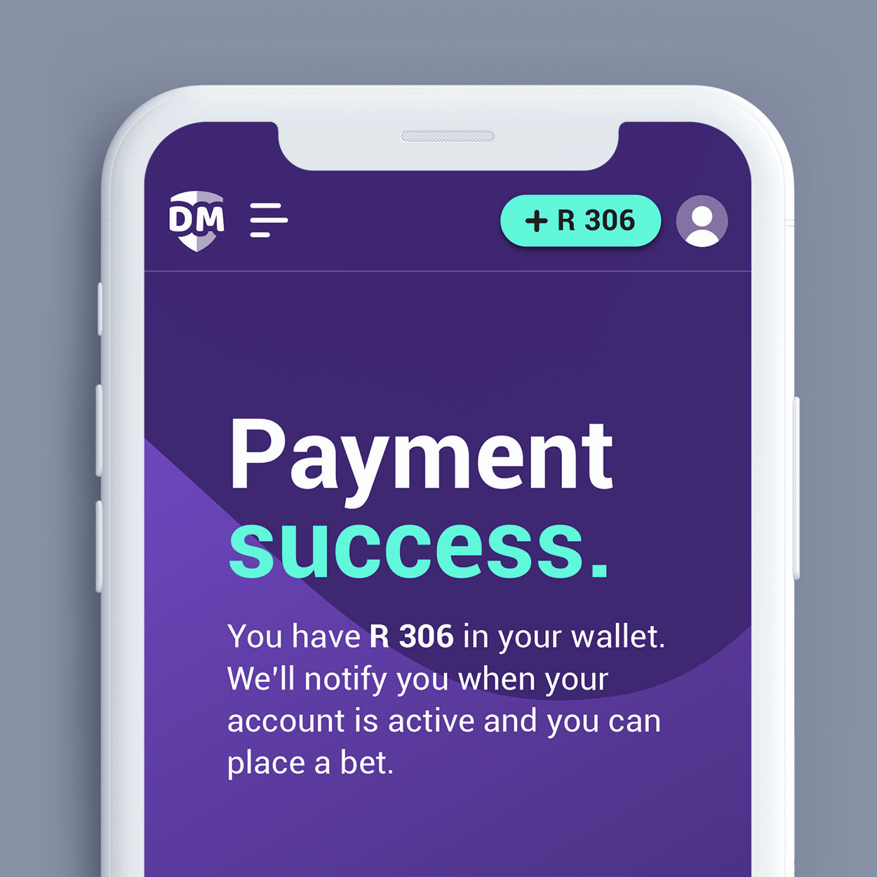 payment-success-page-diskimillions-fixate.jpg