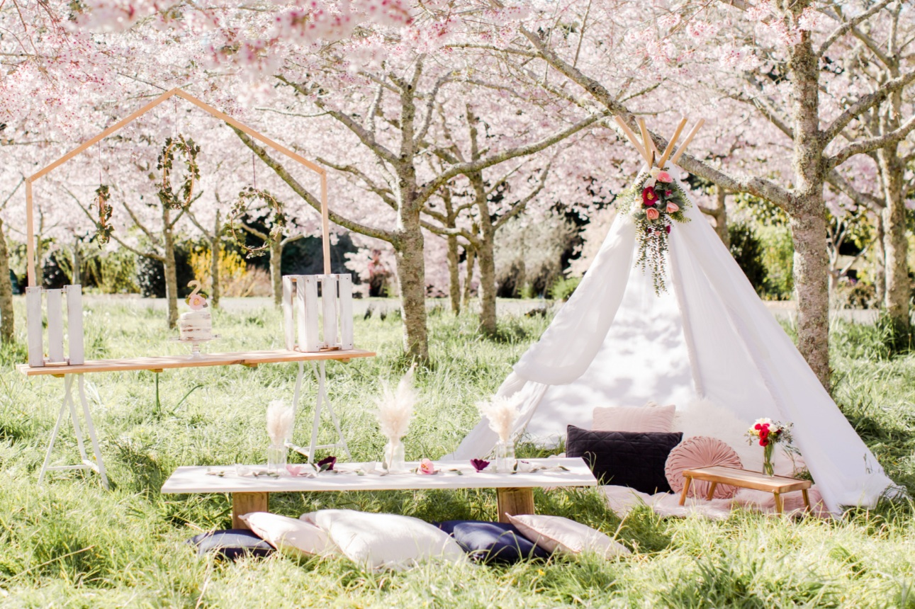 The+pretty+collective-teepee+hire.jpg