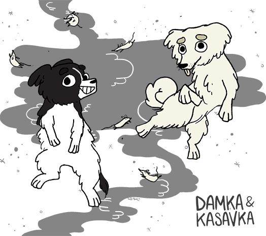 Damka & Kasavka