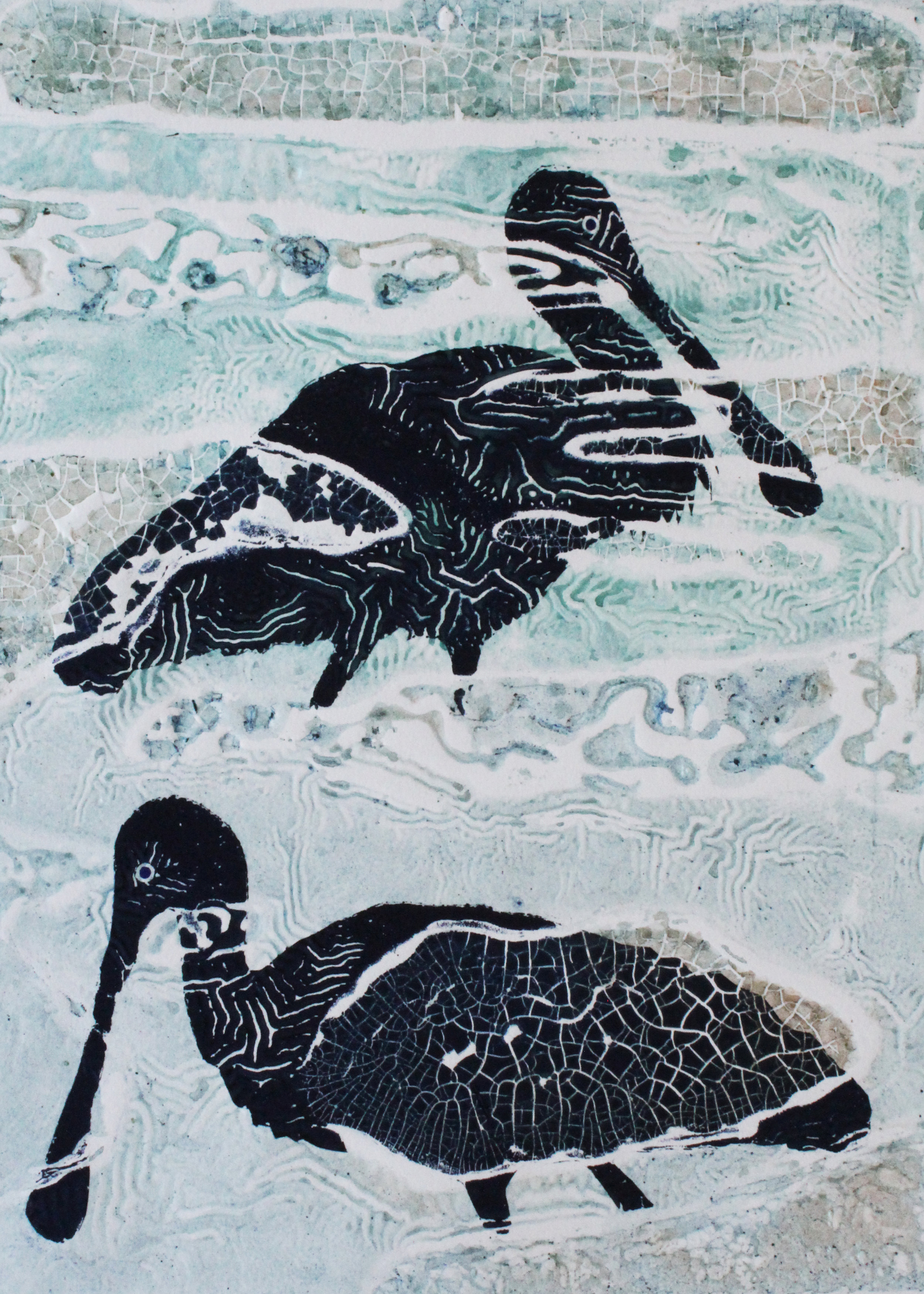 'Spoonbills. Lake Robe'