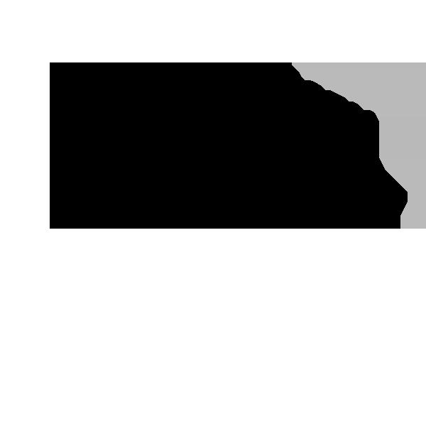 bangandolfusen-black-logo.png