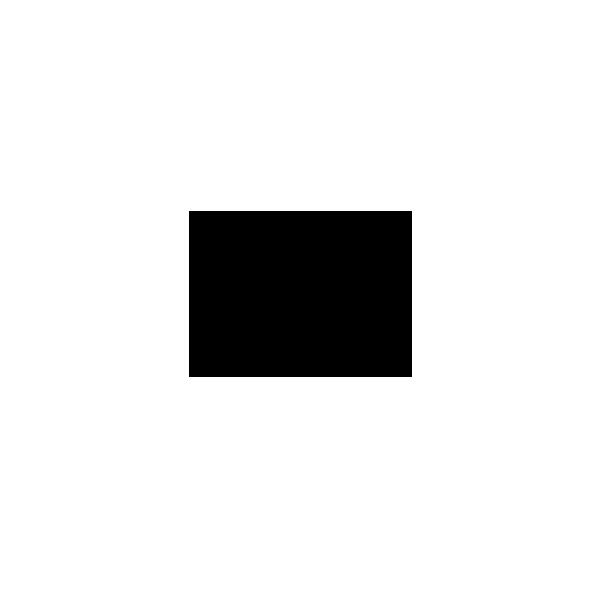 marriott-black-logo.png