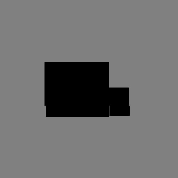 viv westwood-black-logo.png