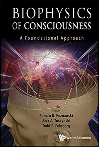 biophysics-of-conciousness.jpg